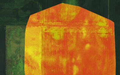 ¿Qué es y cómo funciona una cámara multiespectral?